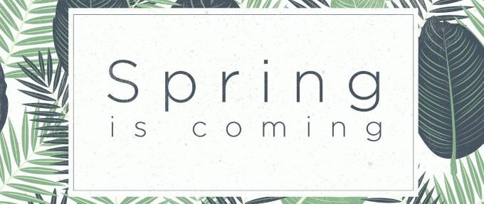 HTC Spring